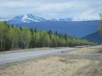 5 ACRES TOK ALASKA EASY ACCESS NO TAXES GOOD ROADS CLOSE TO TOWN OPTIONS