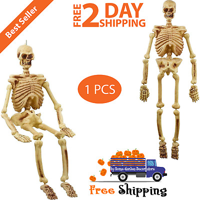 5 Life Size Jointed Skeleton Halloween Spooky Prop Haunted House Skeleton Decor