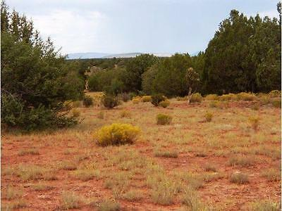 YOUR 40 ACRE IN ARIZONA WITH TREES HAVE YOUR FARM PETSANIMALS- CASH SALE ONLY