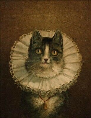 Victorian Trading Co The Widow Tabby Cat in Lace Collar Print