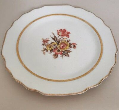VINTAGE Floral Gold Rim W-S- George White Lido 6-34 Plate Fall Colors