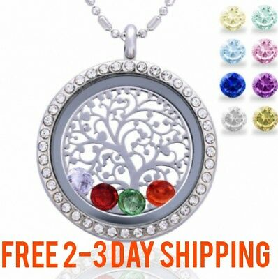 Family Birthstone Necklace Jewelry Floating Charm Lockets Mothers day Mom Gift