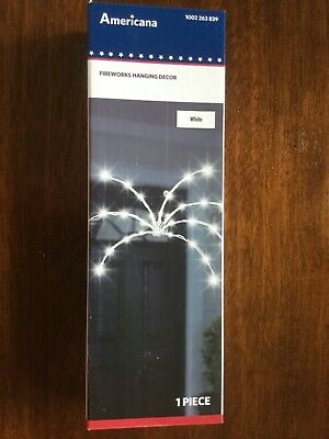 Americana LED 4th of July Fireworks Patriotic Hanging Light 1002263839