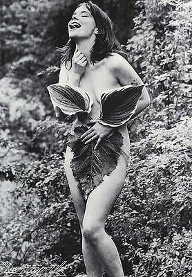 MUSIC POSTERBjork Nude Nymph in Forest 22x32 1990s Sugarcubes NOS Vintage BW