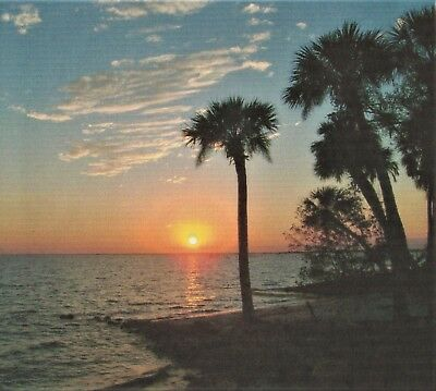PORT CHARLOTTE FLORIDA  - SUBDIVISION LOT - MINUTES TO THE WARM GULF BEACHES