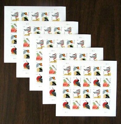 USPS Forever Postcard Coastal Birds Stamps  100 Stamps - 5 Sheets of 20 Stamps