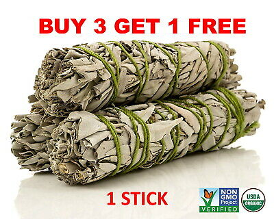 White Sage Cali Smudge Stick  1 Sage BundleHouse Cleansing Made in USA