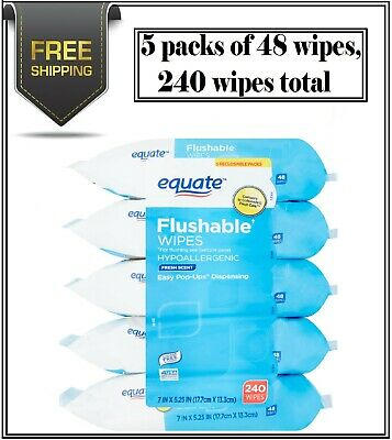 Equate Flushable Wipes Fresh Scent 5 packs of 48 wipes 240 wipes total