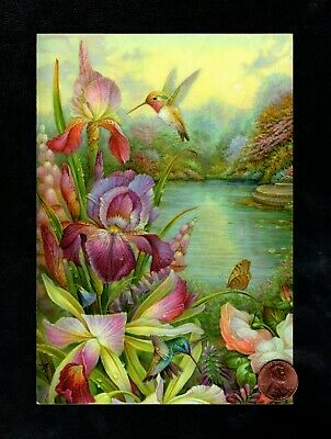 MOTHERS DAY Hummingbird Pink Iris Flowers Butterfly - Greeting Card W TRACKING