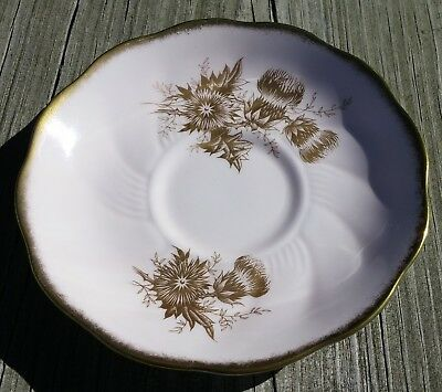 Vintage Royal Grafton Saucer Gold Thistles