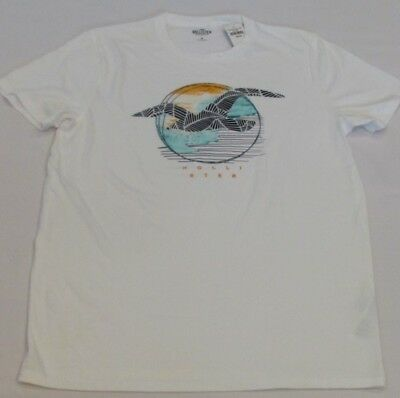 NEW MEN'S HOLLISTER CO- SHORT SLEEVE GRAPHIC T-SHIRTWHITE PICK A SIZE