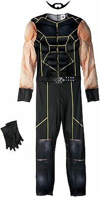 Disguise Seth Rollins Classic Muscle WWE Costume Large10-12