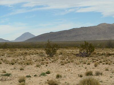 40 Acres in West Texas Hudspeth County Texas