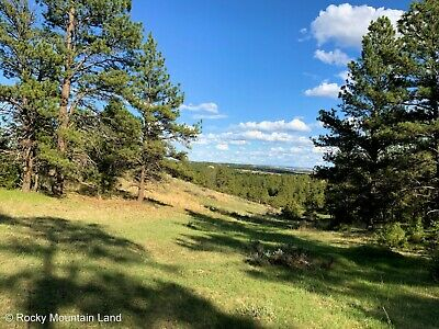 20-1 ACRES MONTANA TREES VIEWS COUNTY ROAD FRONTAGE AND ELECTRIC