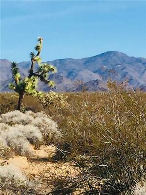 40 Beautiful Acres in Yucca- Arizona-