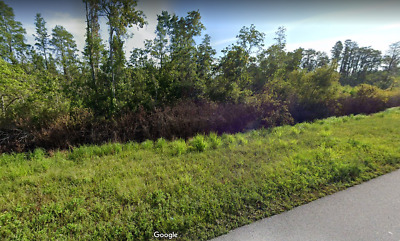 Residential Parcel Foreclosure-Ready Low Taxes No Reserve Road Frontage