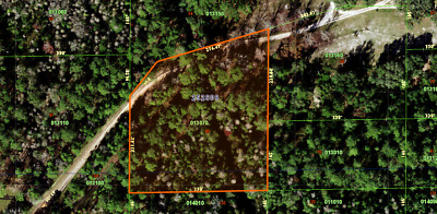 2-53 Acres of Land in Polk City FL Foreclosure Ready No Reserve 1 Bid