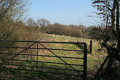 Plot of Land for sale in England  Salehurst - East Sussex 7H1     LAST ONE
