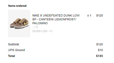 Nike Dunk Low Undefeated Canteen Dunk Size 4-59-51011 DH3061-200
