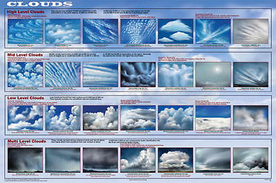 Clouds Laminated Educational Science Weather Classroom Chart Print Poster 24x36