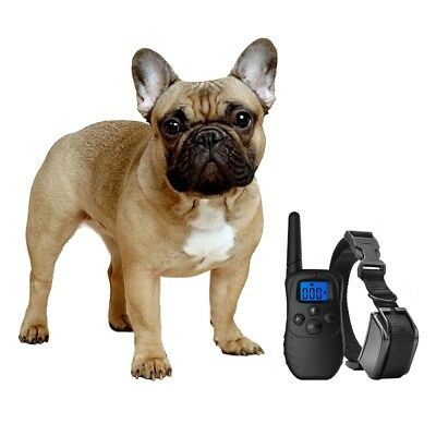 Shock Collar for Small Dogs wRemote - FREE TrainingClicker- 3 Mode Dog Training