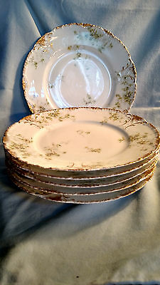 Theodore Haviland Dinner Plates 6 - Blue and Yellow Flowers - Lot 2