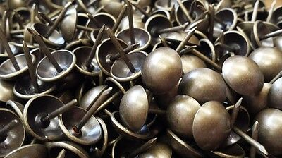 UFFY- French Natural Antique Brass Decorative Upholstery Tack Nail 716 x 12
