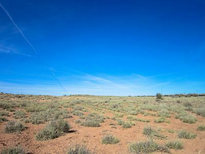 Starting at 1-00  NO RESERVE  CASH SALE in NAVAJO COUNTY AZ