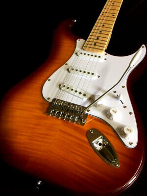 BLEM 6 STRING STRAT STYLE SEMI HOLLOW COCOBOLO PRO ELECTRIC GUITAR