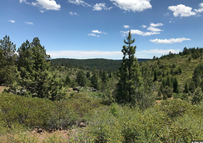 Beautiful Mountain Land Easy Financing Low Payments