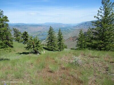 40-26 ACRES NORTHERN WASHINGTON PINE TREES INCREDBILE RIVER VIEWS