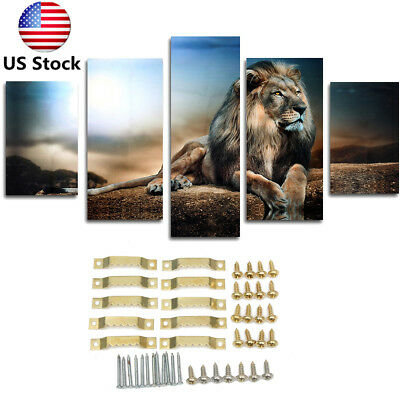 5Pcs Large Sitting Lion Canvas Modern Print Wall Painting Picture Art Home Decor