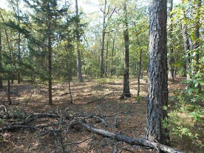 Oklahoma Land  BUY DONT LEASE  AGAIN - 20 Acres  PRIME HUNTING with a CREEK