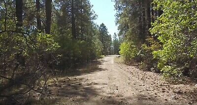 No Reserve  Wooded 1-15 Acre Lot in Forest Lakes near Bayfield Colorado