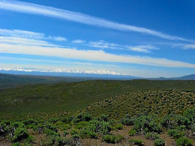 RARE 5 ACRE NEVADA RANCH IN RUBY VIEW RANCHOS ON POWER DIRECT ROAD ACCESS