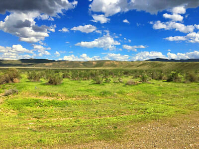 RARE 40 ACRE NEVADA RANCH EASY ACCESS PAVED ROAD CASH SALE NO RESERVE