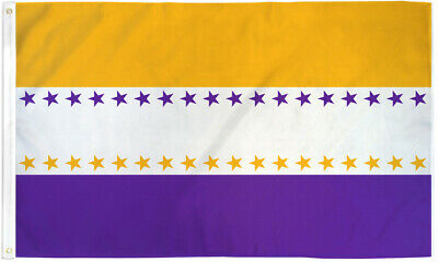 19th Amendment Flag 3x5 Womens Rights Suffrage Suffragette Historical Flag