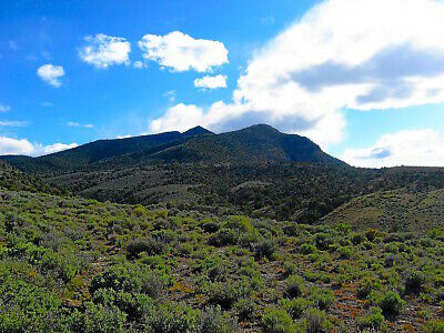 ULTRA RARE 40 ACRE NEVADA RANCH ADJOINS BLM LAND NEAR RESERVOIR IN FOOTHILLS