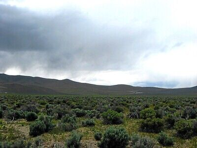 40 ACRE RANCH IN ELKO COUNTY NEVADA- LOCATED IN MURDOCK MOUNTAIN FOOTHILLS