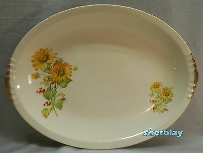 RARE The PADEN CITY POTTERY Yellow Daisies Red Flowers OVAL PLATTER 14 12 Long