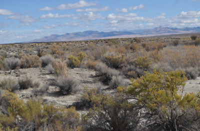20 Acre Placer Gold Mining Claim in Historic Rye Patch Placer District Pershing