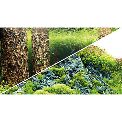 HOBBY FOTOR CKWAND ZUSCHNITT SCAPERS HILL SCAPERS FOREST 100 X 50 CM R CKWAND