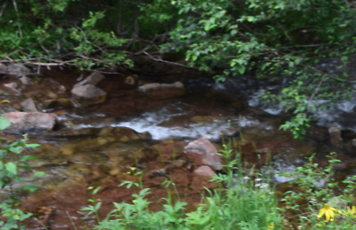 20 Acre Scotch Creek Placer Gold Claim Colorado Rockies Rico Mining District