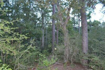 Mississippi land near beach Gorgeous  double half acre lot Ocean Springs MS