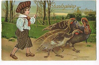 ANTIQUE EMBOSSED THANKSGIVING Postcard  BOY WITH STICK FOLLOWING BEHIND TURKEYS