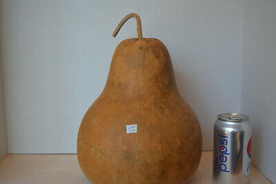 Flat-Top Dried Gourd With Lots Of Artistic Potential