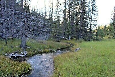 Gold Mine South Dakota Ditch Creek Placer Mining Claim Panning Sluice Highbank
