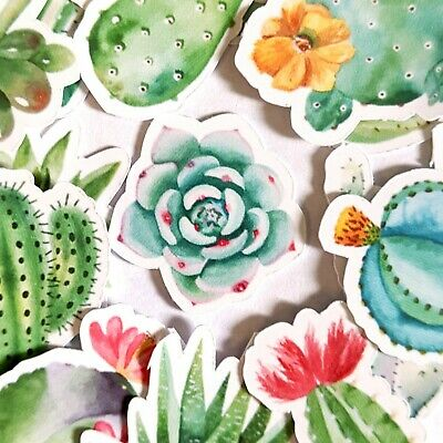 62 Succulent Plant Stickers Journal Diary Stickers Scrapbooking Sticker USA