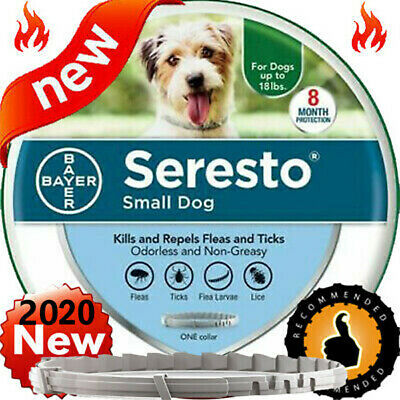 Bayer Seresto Flea and Tick Collar for Small Dog Up to 18lbs 8 Months Control