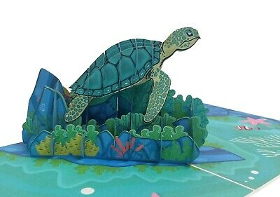 Turtle Pop Up birthday 3D Greeting Card For Mothers Days Fathers Day